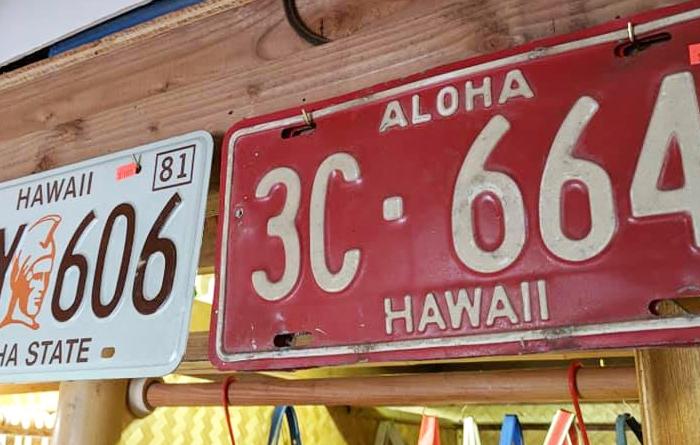 Surf' N Hula Hawaii(サーフ&フラ・ハワイ)とは